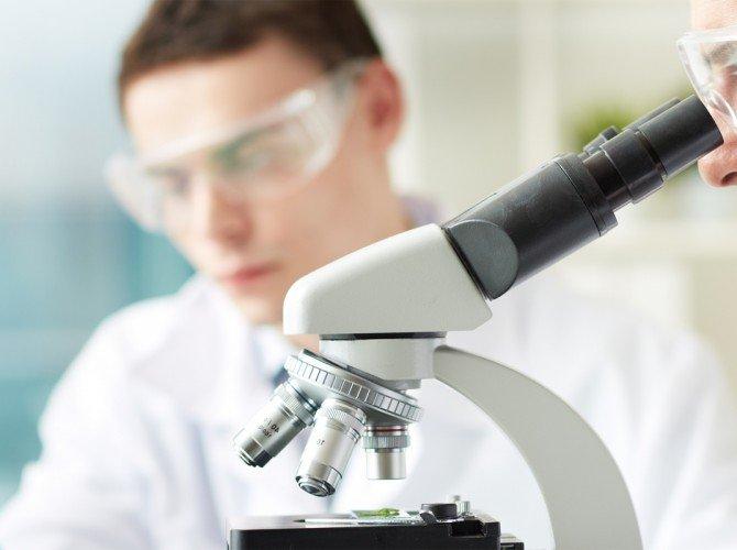 Order Routine Laboratory Work Tree Of Life Natural Medicine